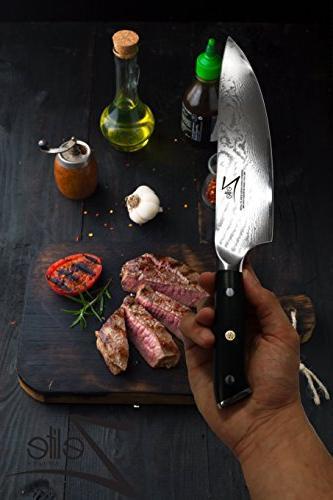 ZELITE Knife 8 inch Series Japanese Super Steel 67 Layer Damascus Razor Sharp, Retention, & Corrosion Resistant